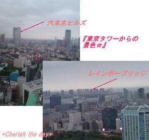 東京タワーからの景色☆