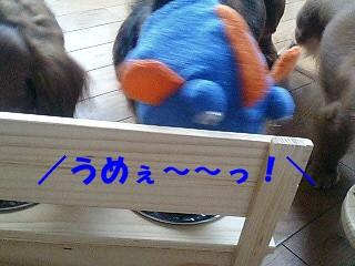 20060315135451.jpg
