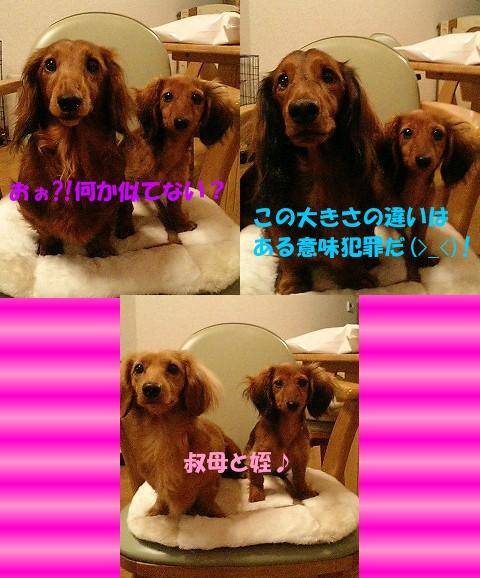 azu_3wan.jpg