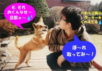chako_kattyo_2.jpg