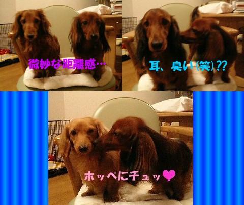 musa_3wan.jpg