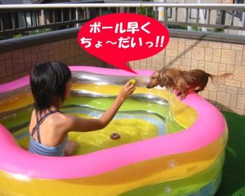 sakura_pool.jpg