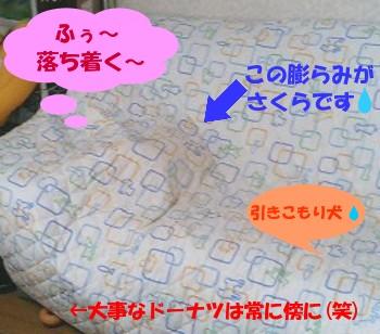 sakura_souzou_2.jpg