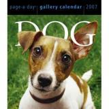 dog365-1