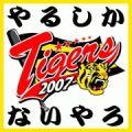 20070530225549