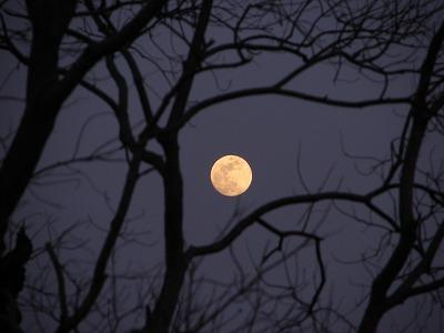 夕焼けに染まる月