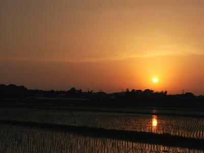 田園からの夕日