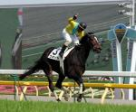 20070527-00000026-spnavi-horse-view-000.jpg