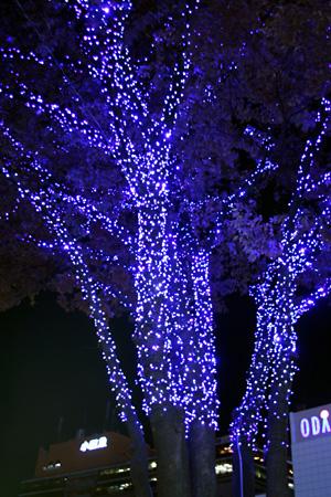 ♪JR新宿駅の東口を出たら…其処は青イルミ!