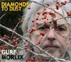Diamonds to Dust / Gurf Morlix