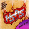 Through the Fire / Hagar Schon Arronson Shrieve