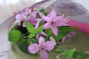 クレマチスの花束2