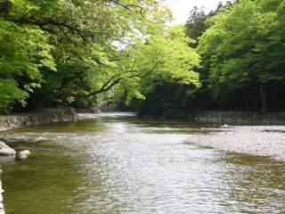 isuzu-river.jpg