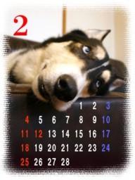 calendar222.jpg