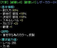 20070312_6.jpg