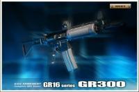 GR300.jpg