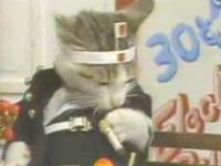 猫のロックバンド