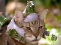 リアルゾイド猫
