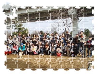 舎人公園わんこオフ