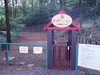 宮沢湖ドックラン