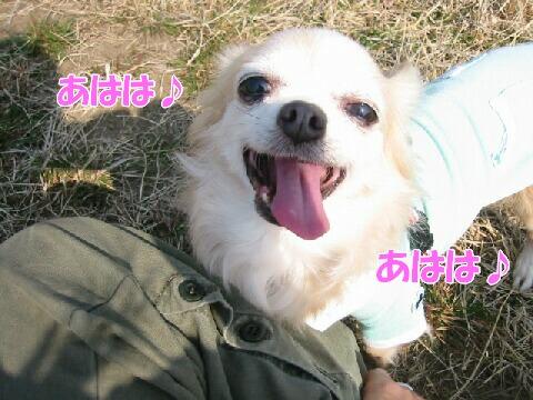 IMG_5638b.jpg
