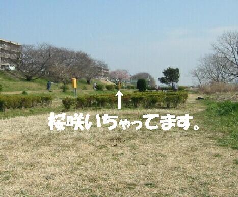 IMG_5639b.jpg