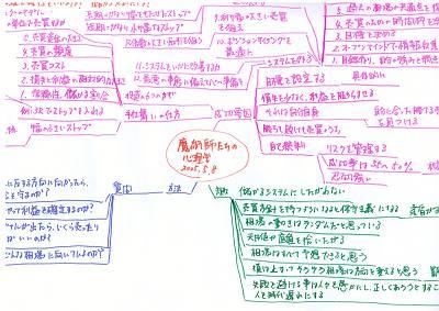 20050509204050.jpg