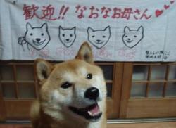1009rikitomaku.jpg