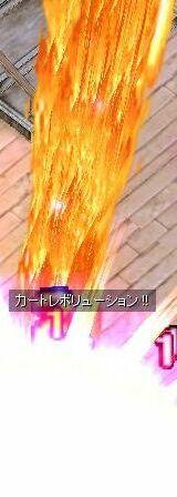 20060604000107.jpg