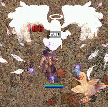 20061119004429.jpg