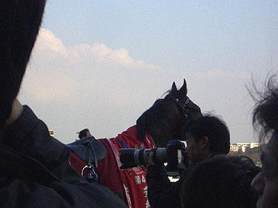 AAura-yayoi-10.jpg
