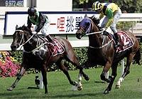 DailyS-HKCM2005.jpg