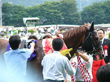 DaiwaMojor-Y2007-02.jpg