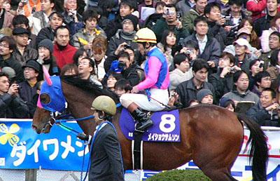 MeishoSamson-03.jpg