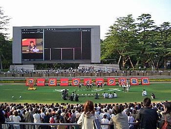 festival03.jpg