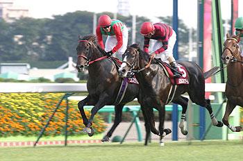 nakayama-all-comers2006-350.jpg