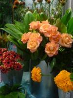 オレンジお花