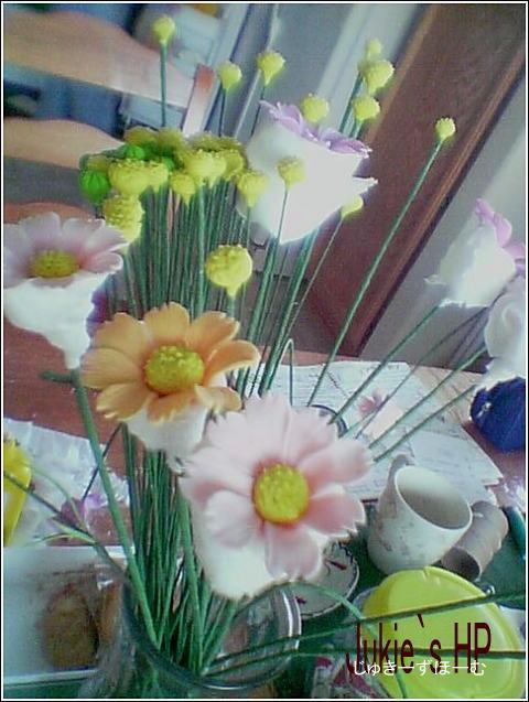 kosumosu11.jpg