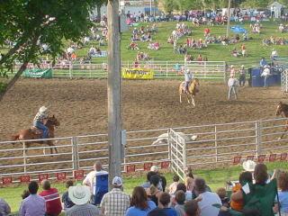 rodeo20.jpg