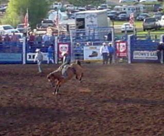 rodeo21.jpg