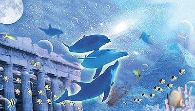 イルカ(無重力)