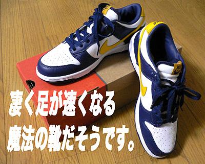 足の速くなる靴