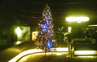 映画館のクリスマスツリー