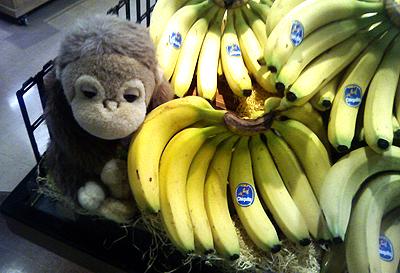 バナナ売場の猿