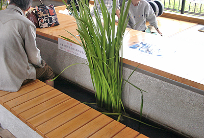 道の駅:日和佐の足の湯
