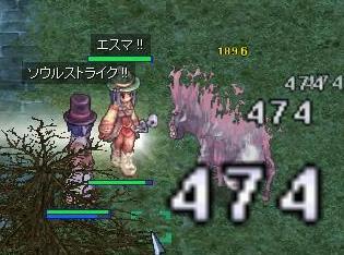 20060226-01.jpg