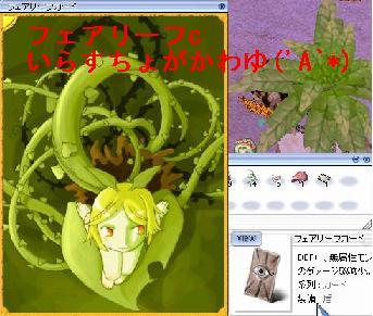 20060620-03.jpg