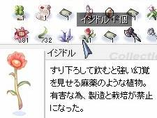 20060625-01.jpg