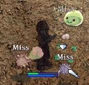 20060709-08.jpg