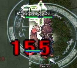20070220-01.jpg